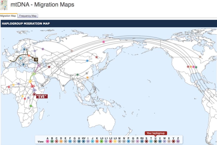 mtdanamigrationmap